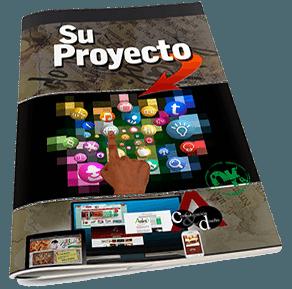 Su proyecto
